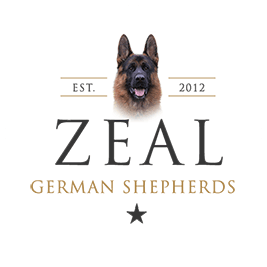 Zeal German Shepherds